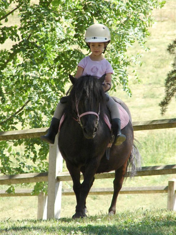 Stage poney vacances les ecuries de loctroi_1